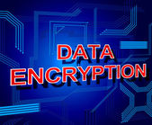 Data Encryption Sign Represents Www Keyboard And Bytes — Stock Photo
