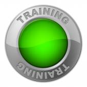 Training Button Indicates Tutoring Education And Learn — Stock Photo
