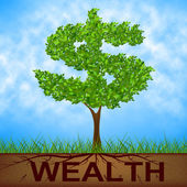 Wealth Tree Shows American Dollars And Branch — Stock Photo