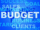 Budget Words Means Bills Costing And Money — Stock Photo