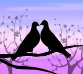 Love Birds Represents Compassion Passion And Heart — ストック写真