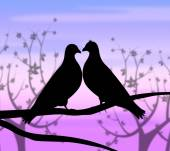 Love Birds Represents Compassion Passion And Heart — Zdjęcie stockowe