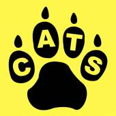 Cats Paw Represents Pet Care And Feline — Stock Photo