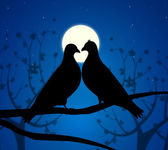 Love Birds Means Boyfriend Affection And Fondness — Foto Stock