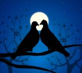 Love Birds Means Boyfriend Affection And Fondness — Stockfoto