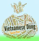 Vietnamese Dong Means Worldwide Trading And Dongs — Stock Photo