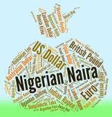 Nigerian Naira Means Foreign Currency And Forex — Stock Photo