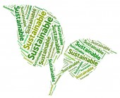 Sustainable Word Indicates Conserving Words And Ecological — Stock Photo