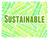Sustainable Word Indicates Conservation Words And Ecological — Stock Photo