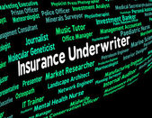 Insurance Underwriter Represents Policy Protection And Insured — Stock Photo