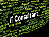 Information Technology Consultant Represents Employment Connecti — Stock Photo