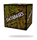 Databases Word Indicates Info Words And Text — Stock Photo