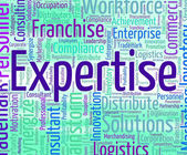 Expertise Word Represents Educated Wordclouds And Specialist — Stock Photo