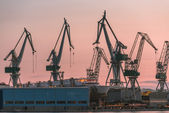 Industrial cargo cranes in the dock — Stock Photo