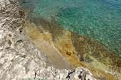Transparent water at the shore — ストック写真