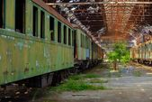 Cargo trains in old train depot — Stock Photo