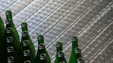 传送带上的几瓶 — 图库视频影像