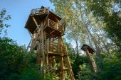 High lookout tower in the forest — Foto de Stock