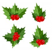 Christmas Berry Sign Vector Illustration — Stock Vector