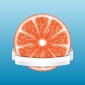 Grapefruit slice — Stock Vector