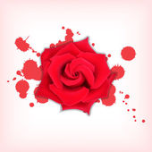 Red rose with splashes — Stock Vector