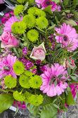 Blommor - rosa och gröna bukett — Stockfoto