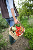 Woman holding basket full of vegetables — Stock Photo