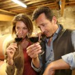 Oenologists tasting red wine — Stock Photo #53290621
