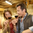 Oenologists in wine cellar tasting wine — Stock Photo #53293293