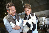 Couple of breeders with goats — Stock Photo
