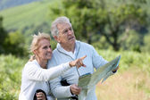 Senior hikers reading orientation map — Stock Photo