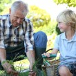 Grandpa with grandson gardening together — Stock Photo #58085801