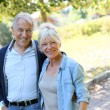 Senior couple walking together in park — Stock Photo #58085947