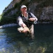 Fisherman catching fario trout in river — Stock Photo #58086601