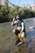 Fisherman catching fario trout in river — Stock Photo