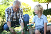 Grandpa with grandson gardening together — Stock Photo