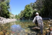 Fisherman fishing trouts in freshwater river — Stock Photo