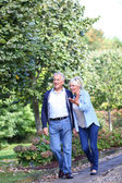 Senior couple walking — Stock Photo