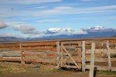 Horse paddock at farmland — Stock Photo