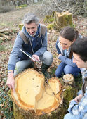 Teacher with students in cut forest — Stock Photo