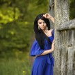 Portrait Of Sensual Fashion Woman In Blue Dress Outdoor — Stock Photo #75356111