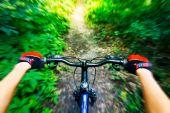 丘を自転車に乗る山。バイカーからの眺め. — ストック写真