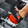 A rack with metal dumbbells in gym. — Stock Photo #53222575