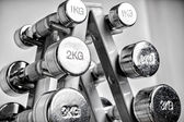 Un rack con mancuernas metálicas. — Foto de Stock