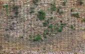 Closeup of Old brown brick wall. — Stock Photo