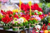 Close up of rows with flowers at flowers market. — Stock Photo