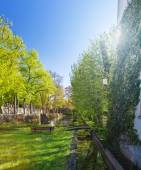 Beautiful green park — Stock Photo