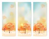 Three abstract autumn banners with color leaves. Vector — Vecteur