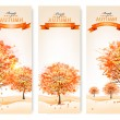 Three autumn abstract banners with colorful leaves and trees. Ve — Stock Vector #52497121