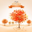 Autumn background with colorful leaves and trees. Vector illustr — Stock Vector #53008075